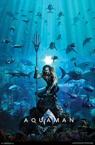 Aquaman Jason Momoa One Sheet Poster 22x34