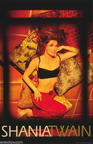 Shania Twain Come On Over Rare Poster