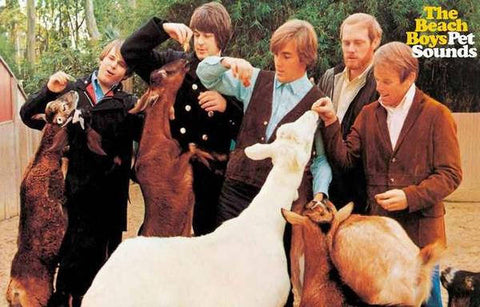 Beach Boys Pet Sounds Rare Vintage Poster