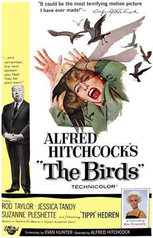 The Birds Alfred Hitchcock Movie    Rare Vintage Poster