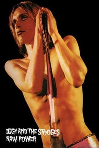 Iggy Pop and The Stooges Color Rare Poster