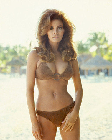 Raquel Welch Brown Swimsuit  8x10 Photograph