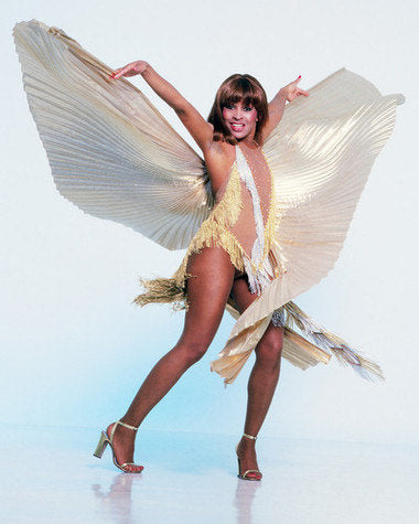 Tina Turner White Dress Color 8x10 Photograph