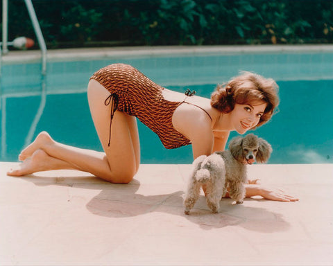 Natalie Wood By Pool  8x10 Photograph