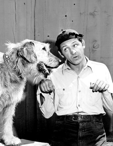 Andy Griffith Show George Lindsey Goober  B/W 8x10 Photograph