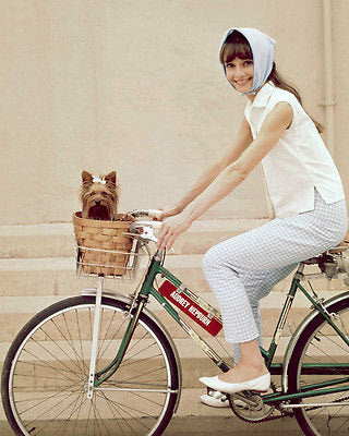 Audrey Hepburn Riding Bicycle Color  8x10 Photograph