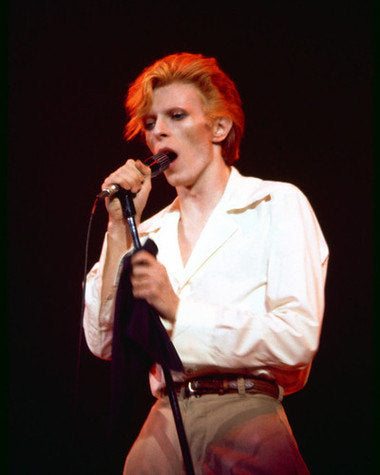 David Bowie On Stage 8x10 Photograph
