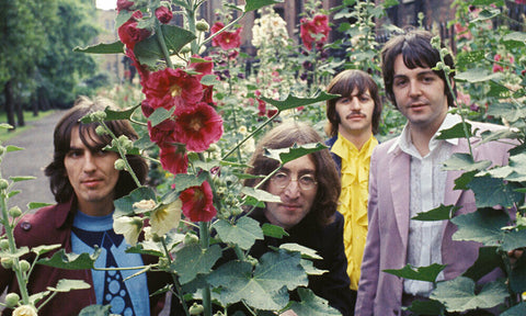Beatles Band In Flower Field   Rare Poster 24x36