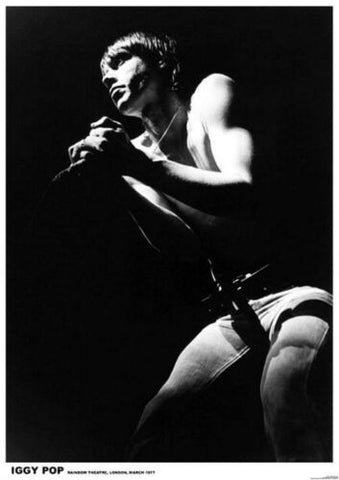 Iggy Pop and The Stooges  Rare Poster