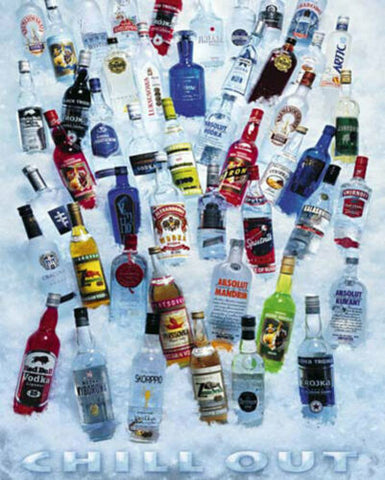 Chill Out Vodka Bottles Poster 16x20