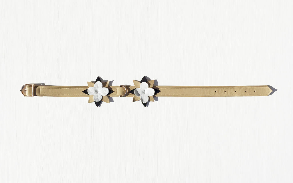 Vita Mea pet collar - B&W&B Flowers
