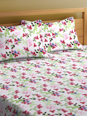 OYSTER  White  Cotton 144 TC Double Bed Sheet With Pillow Covers