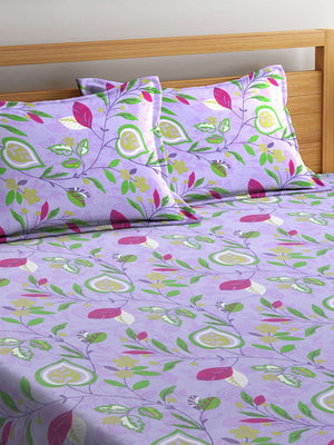 OYSTER  Violet Cotton 144 TC Double Bed Sheet With Pillow Covers