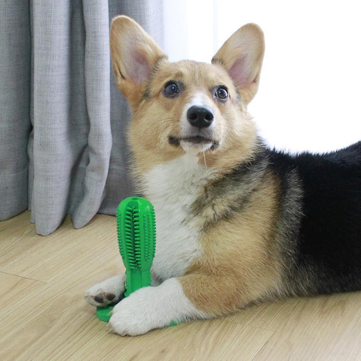 Dog Toothbrush Toy - Feedfend - fistcase