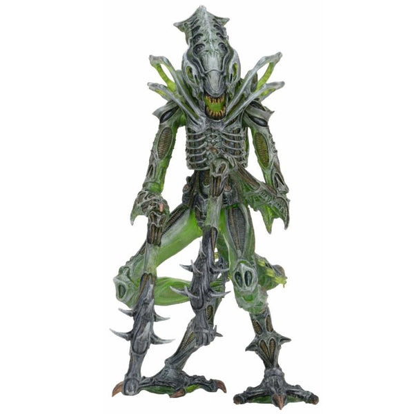 "Alien: 7"" Figure Series 10 - Mantis Alien - NECA - Woozy Moo - 1"
