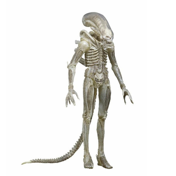 Alien - 1/4 Scale Action Figure - Translucent Prototype Suit Concept Figure - NECA - Woozy Moo - 1