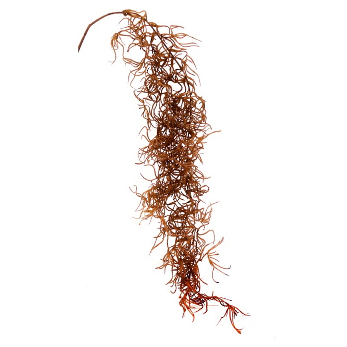 Faux Dried Spanish Moss - Light Brown - Furniture and Homewares Upper Hutt