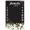 Monthly Memory Blanket - Personalized - Girls - ALL STYLES - 3-6 Week Delivery