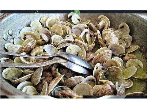 Fresh Pasta Clams, Whole, USA, 5 lbs