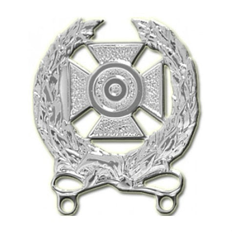 Army Expert Badge Bright