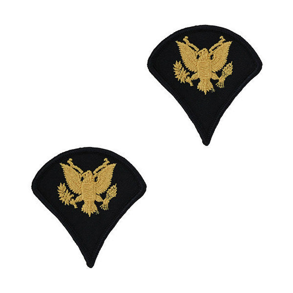 Army Male Gold / Blue Specialist Chevron (1 Pair)