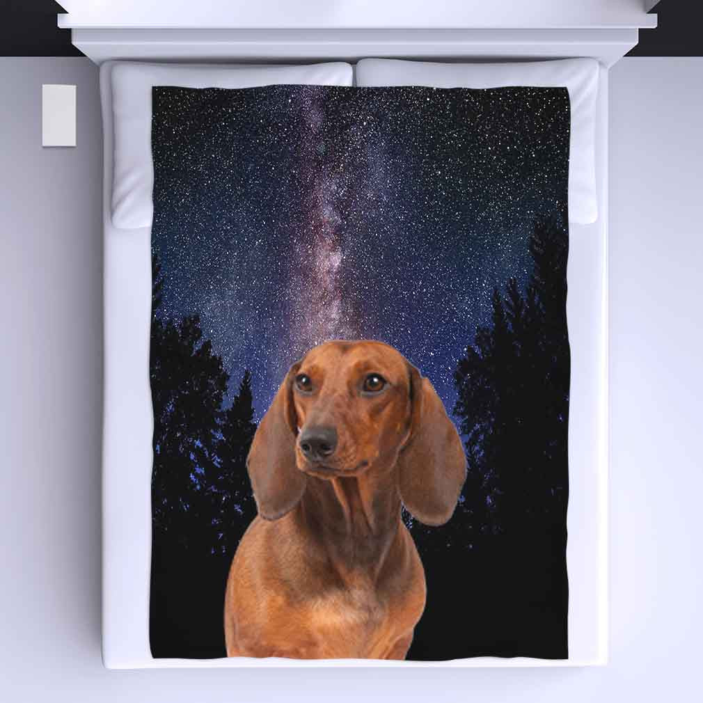 Dachshund All Over Print Blanket