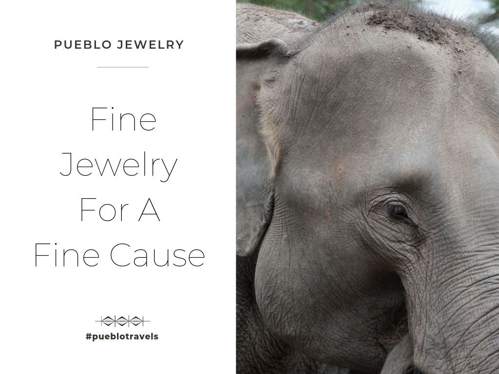 Pueblo Jewelry - fine jewelry for a fine cause