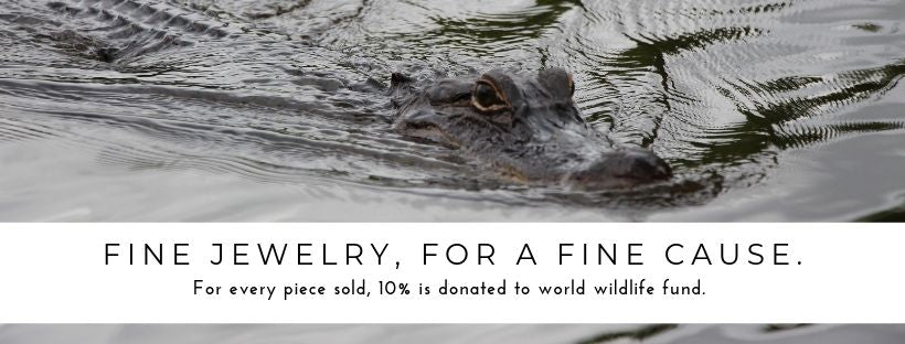 pueblo jewelry, fine jewelry for a fine cause