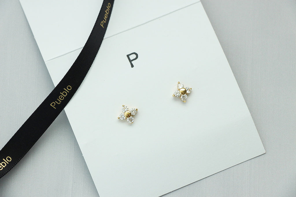 Stud Earrings gift set