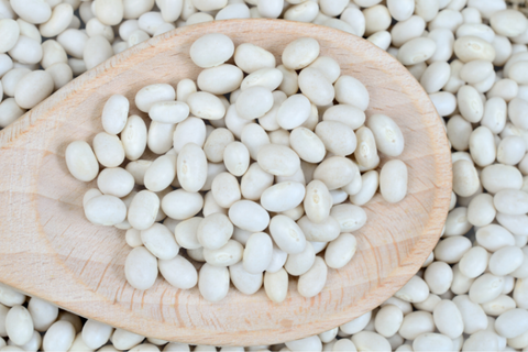 Why Organic White Beans? Part 2 - Nutrition - Be Still Farms Blog