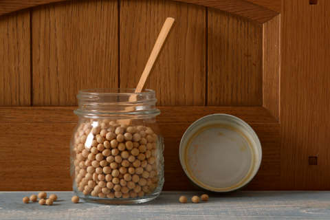 Soybeans Nutrition