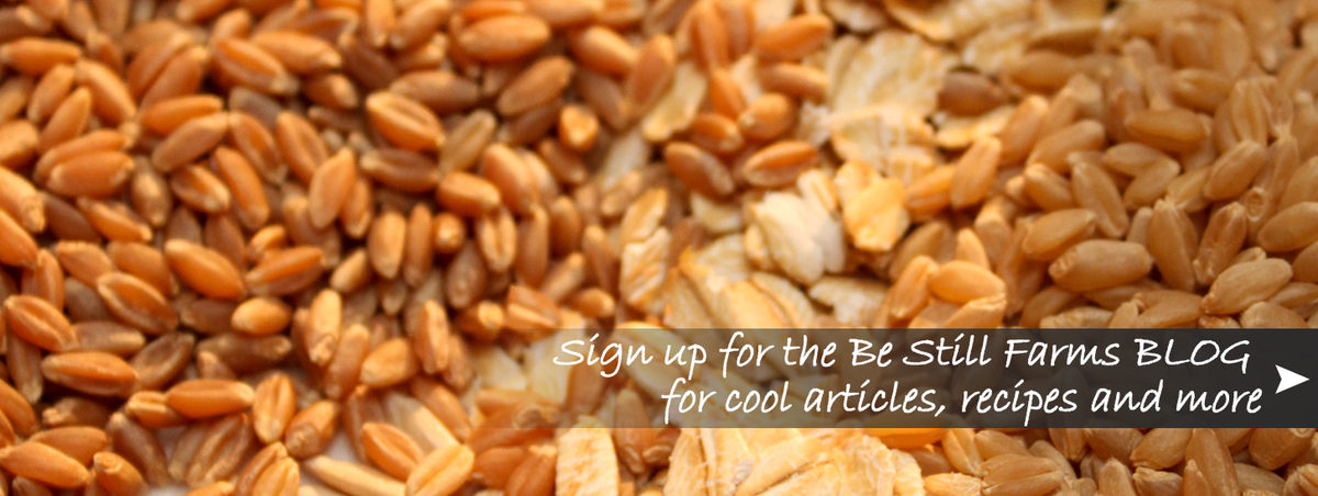 Sign up for the Be Still Farms BLOG
