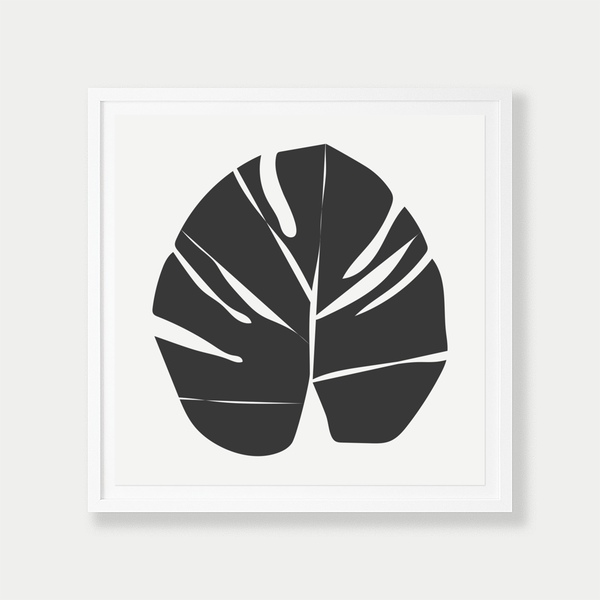 Monstera | Black