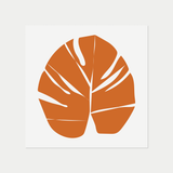 Monstera | Orange
