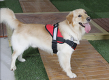 Speedy Pet Durable Dog Harness