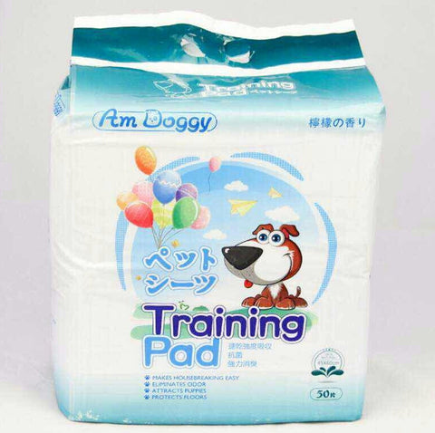Am Doggy Training pee Pad