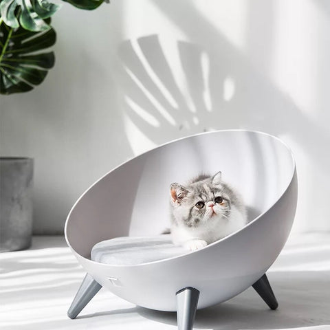 Oval Cat / Dog pet bed