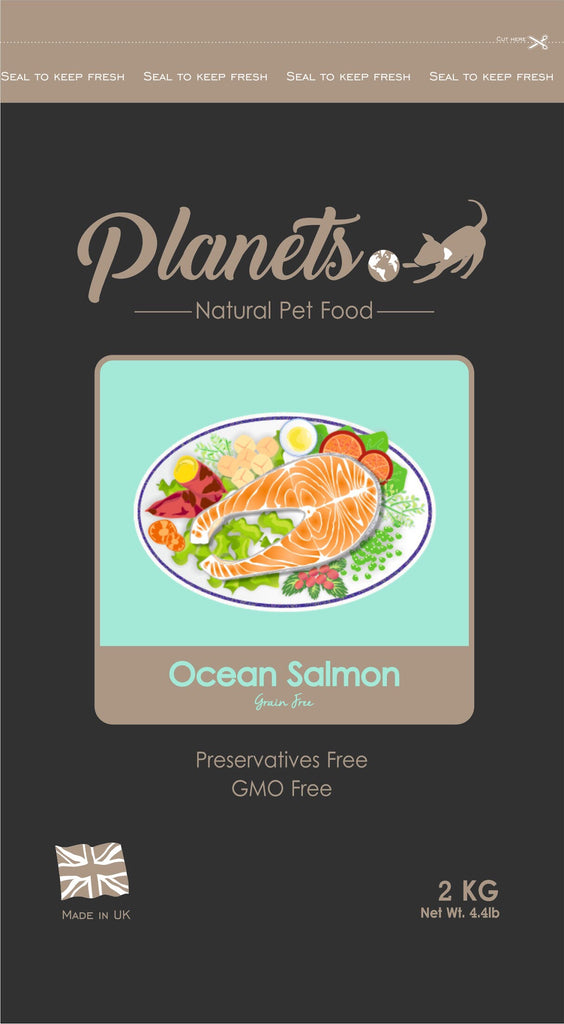 Planets Ocean Salmon - Grain Free - Dry Dog Food 2kg / 6kg Made in UK