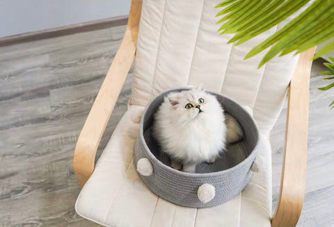 Zeze Cat Bed with Pom Pom   四季貓窩