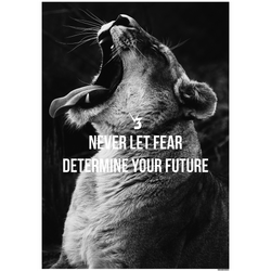 Never Let Fear Determine Your Future
