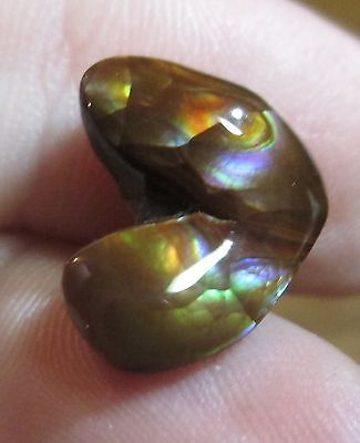 Super MEXICAN Fire Agate Gemstone Freeform all  Natural Multicolored 14x11