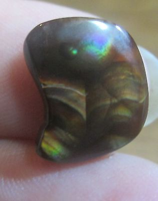 Freeform Multicolored MEXICAN Fire Agate Tumbled Gemstone Natural 12x10..