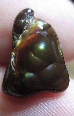 Freeform Natural Multicolored MEXICAN Fire Agate Gem Tumbled 12x9