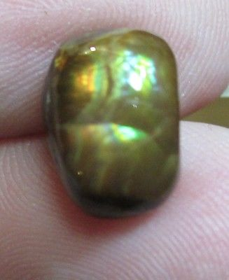 Freeform Natural Multicolored MEXICAN Fire Agate Gemstone 10x7