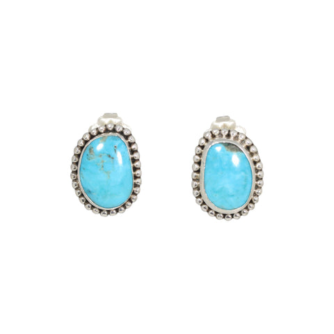 MEXICAN TURQUOISE Earrings Robins Egg Blue Sterling Posts