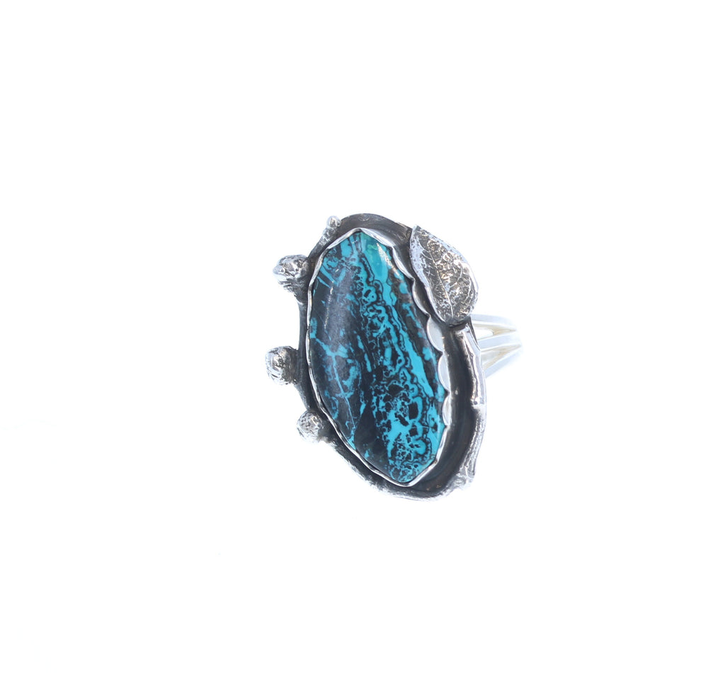 CHRYSOCOLLA Ring Leaf Branch Design Sterling Silver Size 6