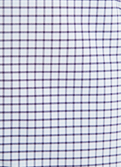 Mizzen + Main Lincoln Purple/Light Blue Gingham Button Down Shirt L-6001