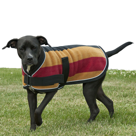 Striped Dog Coat - The Houndstooth Horse  - 1