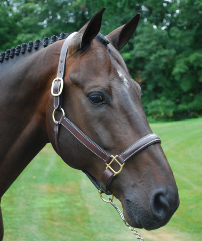 Red Barn Leather Halter Crown Replacement