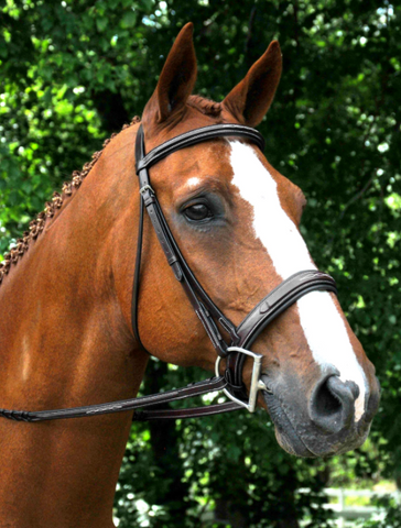 Red Barn Leather TRYON Fancy Stitched Padded Hunter Bridle with Reins